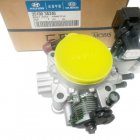 HYUNDAI - BODY ASSY-THROTTLE [3510038340]