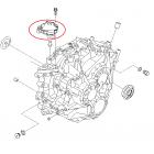 Hyundai / Kia - Switch-Inhibitor [427002D000]