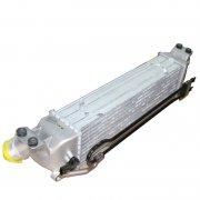 Grand Starex / H1 - Inter Cooler [281904A721]