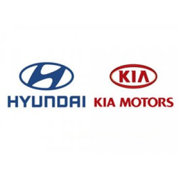 HYUNDAI - HANDLE ASSY-DOOR OUTSIDE [82651-3Z210WW2] by K-Spare.com