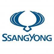 SSANGYONG - LEVER ASSY-TGS A/T [3670009D00]